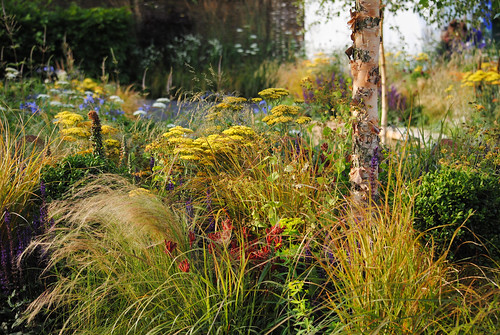The QEF Garden for Joy - Hampton Court Flower Show