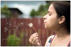 Make a wish.... (phoenix411) Tags: summer flower makeawish