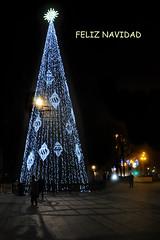 Arbol de Navidad (Luis_G.) Tags: arbol navidad luces noche valladolid feliznavidad arboldenavidad
