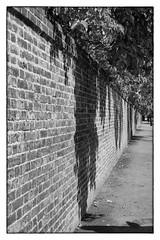 Outside Kensington Gardens - London, England (gastwa) Tags: street portrait england urban bw white black london garden landscape 50mm nikon scenery andrew kensington fx afs d800 f14g gastwirth d800e andrewgastwirth