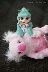 Latte's Valentine's Day Koala (Britt Miscast) Tags: love cat doll plush koala vday crocodile bjd luts latte chu valentinesday nugget zuzudelf {vision}:{outdoor}=0579 crocodilechu