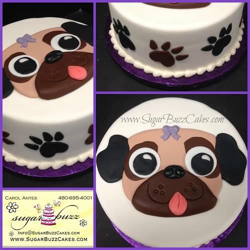 Pleasing Pug Dog Birthday Cake A Photo On Flickriver Funny Birthday Cards Online Bapapcheapnameinfo