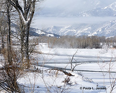 LE6A0727E (bigskywild) Tags: winter snow fog landscape march spring montana steam subzero stillwaterriver kenko14xtc canon100400mmlens nyemt bigskywild canon5dmiii paulaljensen march22014