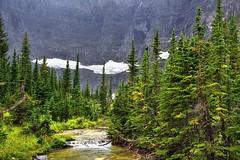 A Stream in the Mountains (thor_mark ) Tags: trees montana stream unitedstates worldheritagesite glacier mountainside glaciernationalpark day9 babb project365 colorefexpro watertonglacierinternationalpeacepark hiketoiceberglake nikond800e
