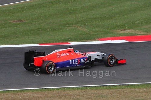 Will Stevens in Free Practice 3 for the 2015 British Grand Prix at Silverstone