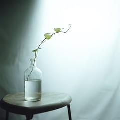 image by yu+ichiro -