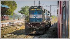 Ex. Samastipur beast reversing at AK.