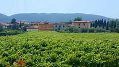 Via Francigena - Aulla - Avenza