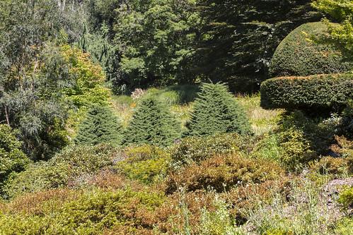cloudehill gardens-10