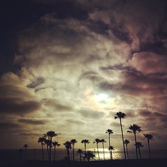 California (Dirk Dallas) Tags: ocean california trees light sunset sea color beautiful clouds composition dark landscape photography photo dallas crazy pretty pic palm minimal southerncalifornia dirk dirka iphone mobilephotography iphone5 dirkdallas iphoneography iphoneographer instagram