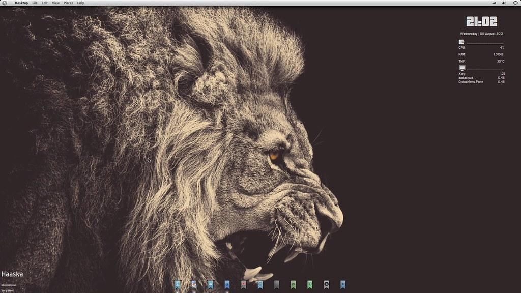 lion_gnome_2___august___12_by_dobbie03-d5af0au