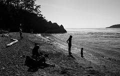 Little North Beach (Diueine) Tags: leica blackandwhite bw usa silhouette 35mm prime washington deception pass rangefinder m summicron f2 mm monochrom asph monteiro contrejour rf iso320 leitz diueine 2013