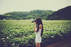 Hokkaido (Amanda Mabel) Tags: summer portrait mountains japan canon asia hokkaido overalls faceless takingapicture flowerfield potatofield facelessportrait 5dmarkiii 5dm3 amandamabel amandamabelphotography