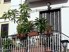I balconi di Taormina (7) (Luigi Strano) Tags: italy europa europe italia balcony balconies sicily taormina sicilia messina sicile sizilien италия европа сицилия таормина
