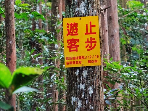 向天湖光天高山 (53).jpg
