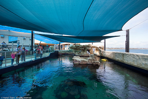 Thumbnail from AQWA: Aquarium of Western Australia