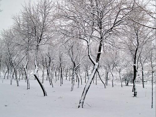 Noblejas, Parque Punto limpio durante el invierno