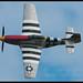 P-51 - Damn Yankee