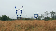 Both ends (duncanmc42) Tags: bridge newzealand mist field grass rain misty river twins weeds outdoor bridges nelson cables rainy wires cycle pairs waimea southisland grasses uprights cycleway tasmandistrict ilobsterit