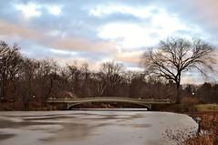 Central Park, The Bow Bridge, 01.18.14 (gigi_nyc) Tags: nyc newyorkcity winter ny ice centralpark bowbridge thelake