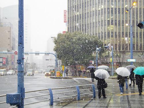 Snow In Osaka