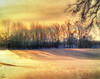 --winter sparkles and shadows-- (xandram) Tags: morning winter snow sparkles photoshop shadows textures