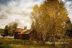 Twin Lakes,Colorado (rikki500) Tags: autumn mountains fall canon landscapes colorado fineart denver coloradosprings twinlakes textured photographybybuzz