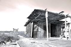 baracca-01 (picwalt) Tags: shack saline cabane choza baracca