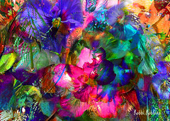 The Glamours Life (brillianthues) Tags: flowers floral abstract colorful collage photography photmanuplation photoshop