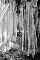 underneath (.martinjakab) Tags: blackandwhite schwarzweiss icicles eiszapfen water wasser x100t fujifilm monochrome bw contrast winter ice frost fingers