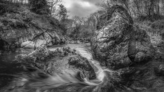 fairy glen (Einir Wyn Leigh) Tags: landscape wales blackandwhite monochrome mono scene rocks rain climate moody light outdoors trees water stream river march