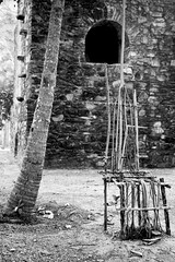 The Bayon Chair Gardeners Vision (arfabita) Tags: portrait bw india white black colour art texture monochrome vertical wall work gardeners interesting different landscaping unique background branches picture craft shades willow photograph hues bombay tropical unusual weeping tropics banyan generic banyantree landscaped banyon colorabstract manoribel cfratwork