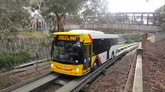 Adelaide O-Bahn Busway (The Scooter Guy) Tags: man bus busway track footbridge may overpass pedestrian tunnel adelaide hackney friday southaustralia 24th entry scania obahn 2013 gilberton k230ub exity sl202 parktce
