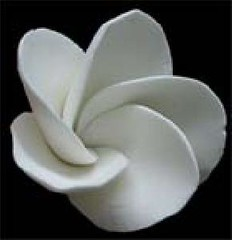 Small White Frangipani No wire 3cm (sweetinspirationsaustralia) Tags: cupcaketoppers