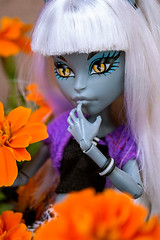 Silvi (~Sandlady~) Tags: monster high dolls cam werecat