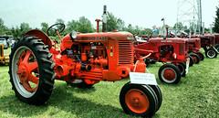 Pretty Tractors All in a Row (gabi-h) Tags: red summer rural vintage tractors princeedwardcounty gabih quinteflywheels