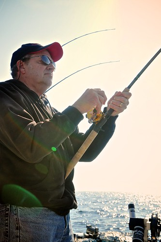 Bob Reeling Away in the Afternoon Light