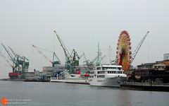 港口旁的摩天轮
