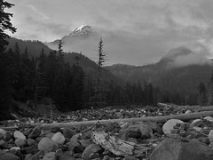 Mt. Rainier from Nisqually River (Mike Dole) Tags: washingtonstate mtrainier cascademountains mtrainiernationalpark