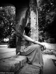 FATA DELLE FARFALLE (Don Oscarez) Tags: venice portrait anna woman cute lady kiss arte cosplay magic fairy isabel delia cosplayer wonderland venezia tale giappone farfalla castelli artista fata vittorio magia dolo favola sgarbi casella winx reenactement pittrice guglielmi rievocazioni