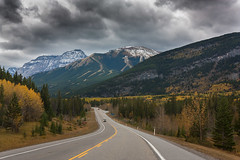 Road to fall (JoLoLog) Tags: autumn canada mountains fall kananaskis fallcolors alberta rockymountains lorien kananaskiscountry canadianrockies kcountry highway40 nakiskaskiresort canonxsi