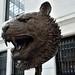 Tiger by Ai Weiwei