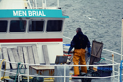 Men Brial (Namicjo) Tags: ocean sea fish seascape reflection bird water port doc