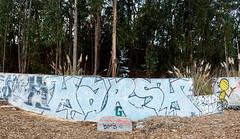 harsh (_unfun) Tags: graffiti musk harsh bayareagraffiti