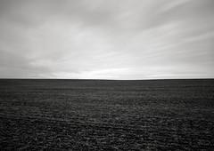In a Field, Helvetia, Oregon (austin granger) Tags: longexposure film ice field oregon farm empty land helvetia fallow largeformat furrows deardorff austingranger