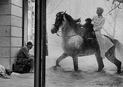 st_7  waiting for a savior on a white horse (ilanbenyehuda) Tags: urbanarte