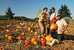 "hannah, jason and jonah with winter squash • <a style=""font-size:0.8em;"" href=""http://www.flickr.com/photos/75400798@N04/13400098803/"" target=""_blank"">View on Flickr</a>"