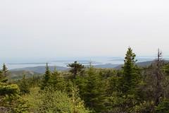 View from Cadillac's high peak (daveynin) Tags: pinetree islands coast flora nps overlook acadia deaftalent deafoutsidetalent deafoutdoortalent