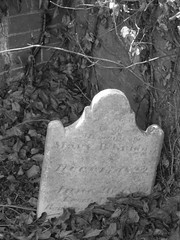 Blandford Cemetery (Lys Bleu) Tags: blandfordcemetery petersburgvirginia petersburg cemetery graveyard headstone tombstone grave ivy brickwall