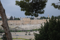 010 Golden gate_002_ (Teodor Ion) Tags: terrasanta gerusalemme montesion israeljerusalem templemount oldcityofjerusalem